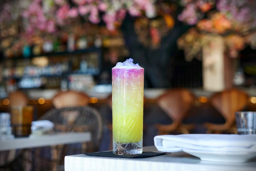 Cocktail Bars: Cloak & Petal, San Diego